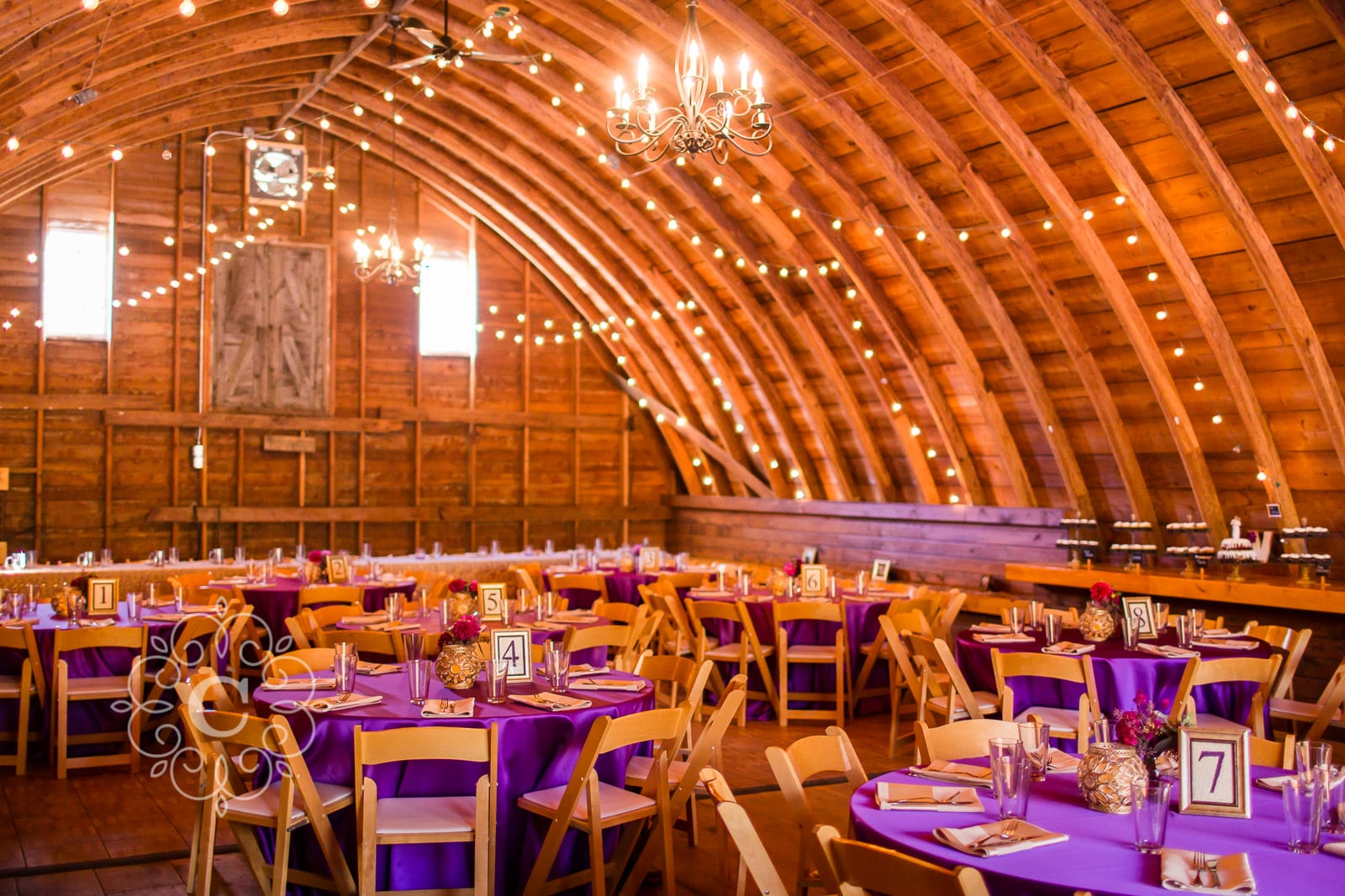 MN Barn Wedding Photo