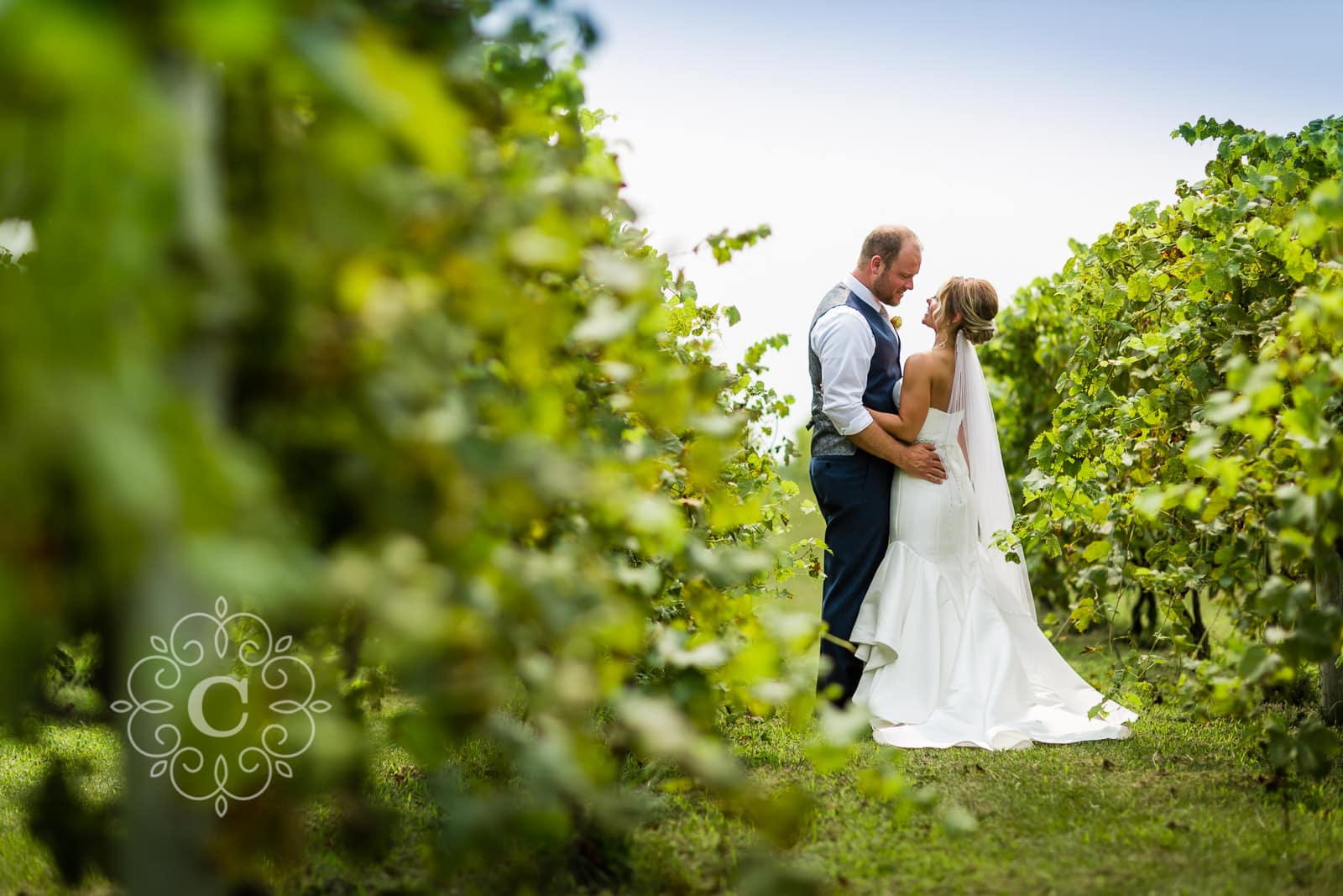 Beer Vineyard Wedding Photos