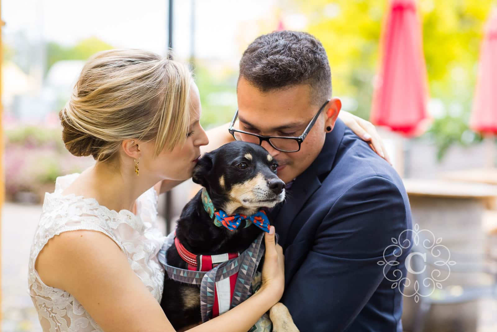 Urban Growler Brewing Company Wedding Reception Dog Photo