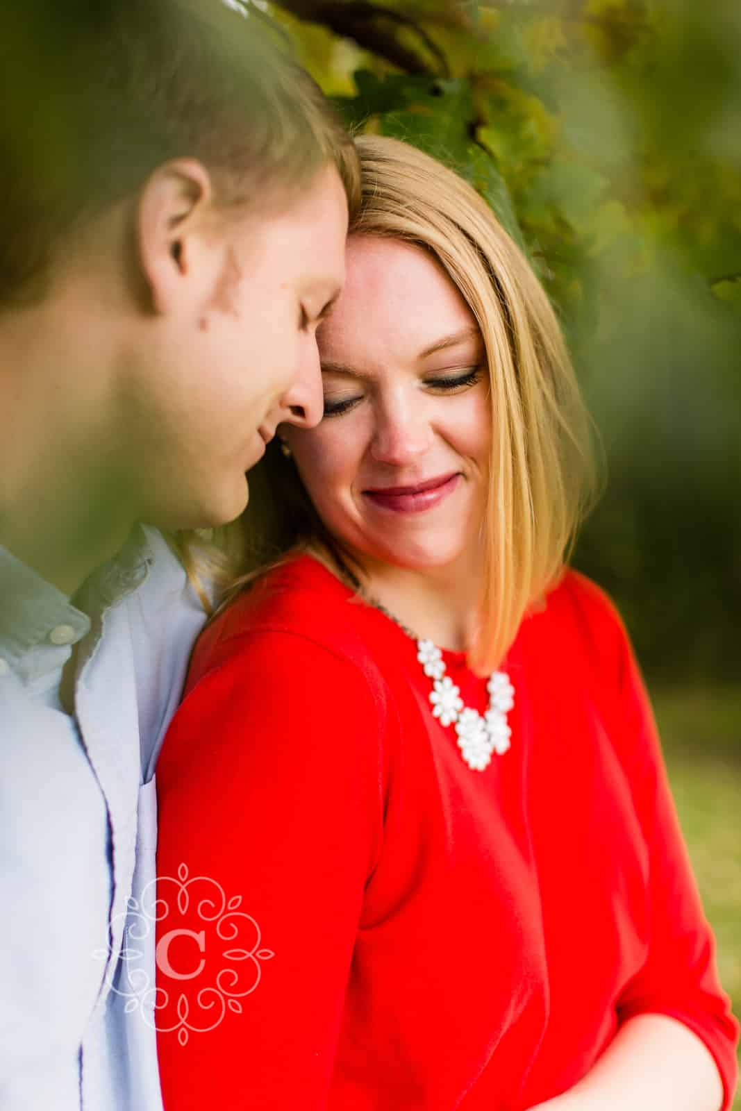 Pioneer Park Stillwater MN Engagement Photo