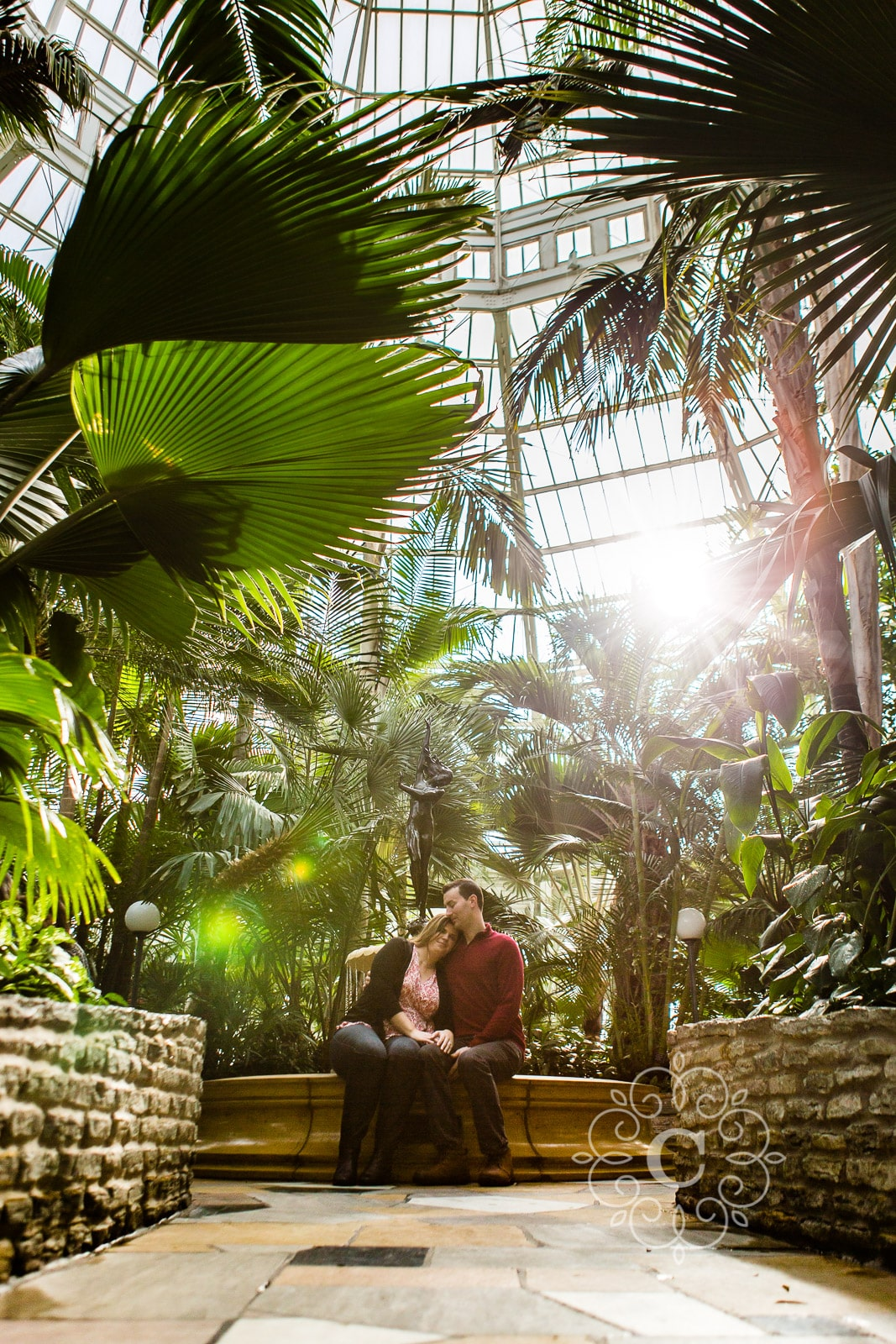 Palm Dome Como Conservatory Engagement Photo