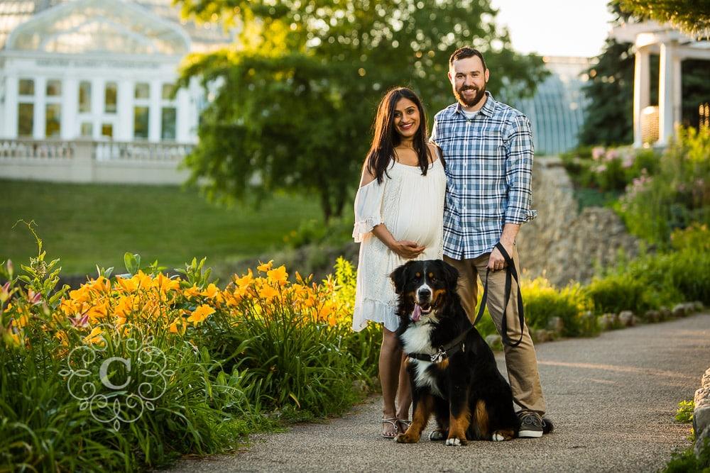 Dog Maternity Photo Ideas