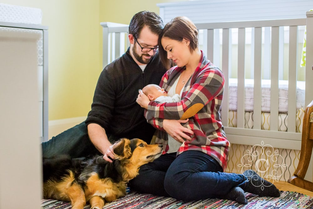 Dog Newborn Photo Ideas