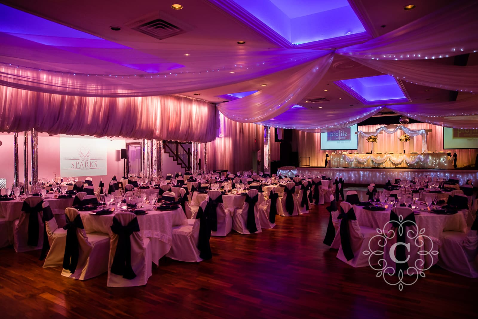 Profile Event Center Minneapolis MN Wedding Photo
