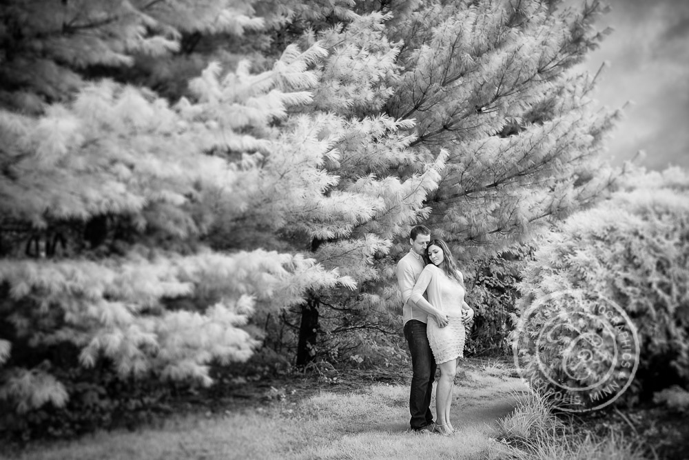 Lyndale Park Peace (Rock) Garden Engagement Photo